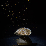 Huîtres-Ostra-Regal-sélection-Or-22-carats