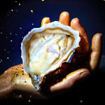 Huître-Ostra-Regal-sélection-OR